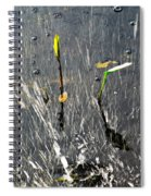 Detachment Spiral Notebook