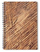 Detail Cut On Trunk Wood Spiral Notebook