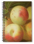 Detail Of Apples On A Shelf Spiral Notebook