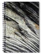 Detail Of Dry Broken Wood Spiral Notebook