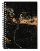 Detail Of New Orleans Saxophone Spiral Notebook