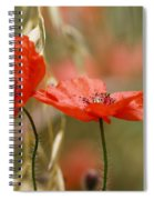 Detail Of The Corn Poppy Spiral Notebook