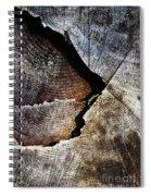 Detail Old Sawn Stump Spiral Notebook