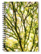 Detailed Tree Branches 1 Spiral Notebook