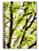 Detailed Tree Branches 3 Spiral Notebook