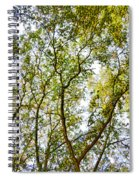Detailed Tree Branches 5 Spiral Notebook