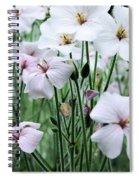Details In Soft White Spiral Notebook