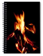Devil Fire Spiral Notebook