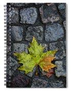 Deville Spiral Notebook