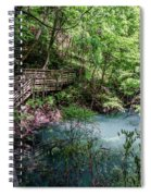 Devil's Millhopper Gainesville Fl II Spiral Notebook