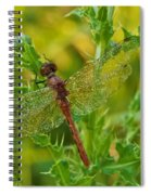 Dew Covered 5904 Spiral Notebook