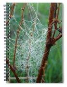 Dew Covered Spider Web Spiral Notebook
