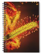 Dew Covered Tentacles Spiral Notebook