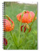 Dew Covered Tiger Lilies Spiral Notebook
