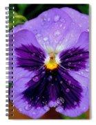Dew Drop Butterfly Spiral Notebook