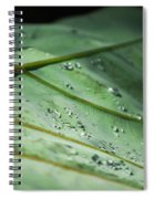 Dew Droplets Of Nature Spiral Notebook