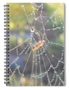 Dew Drops On A Spider Web Spiral Notebook
