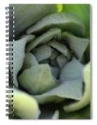 Dew On Common Mullein Spiral Notebook