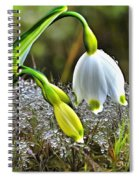 Dew On Lilly Of The Valley Spiral Notebook