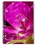 Dew On Pink Spiral Notebook
