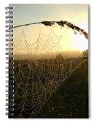 Dew On Spider Web At Sunrise Spiral Notebook