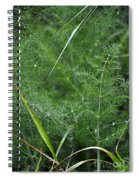 Dew On The Ferns Spiral Notebook