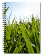 Dewdrops On New Wheat Spiral Notebook