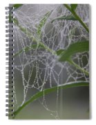 Dewy Diamonds Spiral Notebook