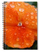 Dewy Pansy 1 Spiral Notebook