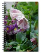Dewy Pansy 4 Spiral Notebook