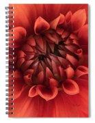 Dhalia Spiral Notebook