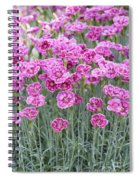 Dianthus Gold Dust Flowers Spiral Notebook
