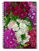 Dianthus Group  Spiral Notebook