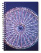 Diatom - Arachnoidiscus Ehrenberi Spiral Notebook