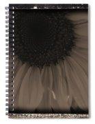 Diatrop Three Quarter Sunflower Spiral Notebook