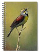 Dickcissel Summer Song Spiral Notebook