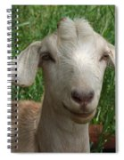Did You Bring Lunch Spiral Notebook