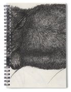 Diddy Big Face Spiral Notebook