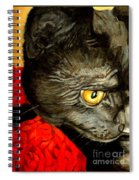 Diego The Cat Spiral Notebook