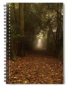 Diferent Paths Spiral Notebook