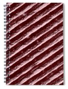Diffraction Grating Spiral Notebook