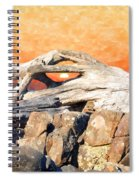 Diftwood Sunset Spiral Notebook