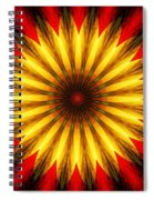 Digita Doodle 012211 Spiral Notebook