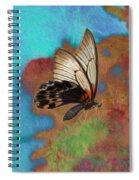 Digital Art Butterfly Spiral Notebook