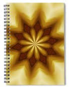 Digital Doodle 110510a Spiral Notebook