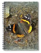 Digital Red Admiral Butterfly - Vanessa Atalanta Spiral Notebook
