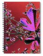 Figtree Leaves 3 Spiral Notebook