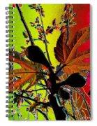 Figtree Leaves 4 Spiral Notebook