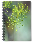 Dill Abstract On Mint Green And Plum Spiral Notebook