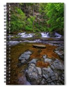 Dingmans Creek Spiral Notebook